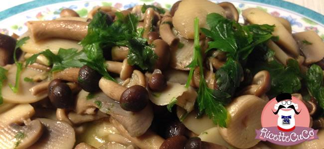funghi misti trifolati pioppini chiodini e champignon con il cuisine companion ricettecucoit