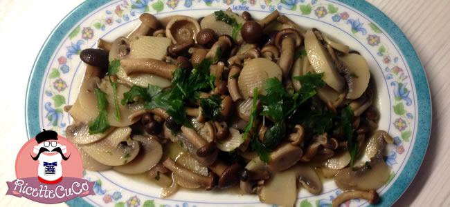 funghi pioppini chiodini trifolati moulinex cuisine companion ricette cuco