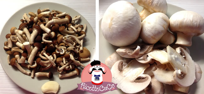 funghi pioppini chiodini trifolati moulinex cuisine companion ricette cuco funghi champignon