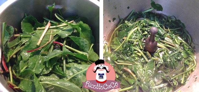 beta vulgaris maritima ricetta bietola selvatica marittima erbe spontanee salento microonde monsier cuisine moncu moulinex cuisine companion ricette cuco bimby