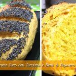 Pane di grano duro con curcuma e semi di papavero con e senza il Cuisine Companion