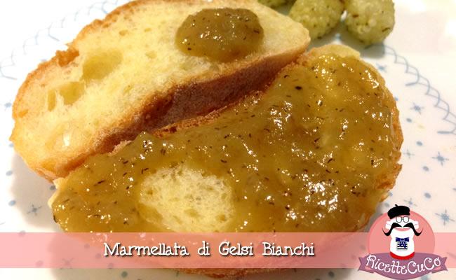 marmellata gelsi more bianche cheusi monsieur cuisine moncu moulinex cuisine companion ricette cuco bimby