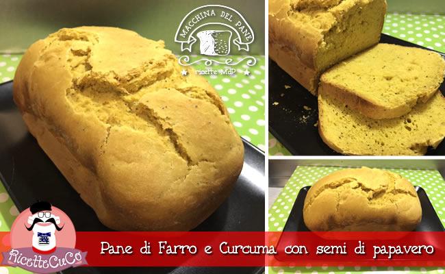 pane di farro e curcuma pane farro curcuma semi papavero macchina del pane ricetta mdp monsieur cuisine moncu moulinex cuisine companion ricette cuco bimby