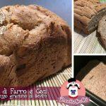 Pane di Farro e Ceci con mezzo grammo di lievito (metodo Poolish) con la Macchina del Pane Silvercrest