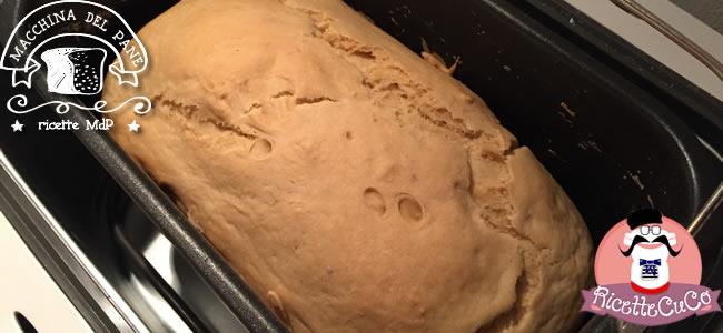 pane di kamut con 1 grammo di lievito metodo poolish macchina del pane ricetta mdp monsieur cuisine moncu moulinex cuisine companion ricette cuco bimby